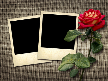 Polaroid-style photo on the background of linen with red rose photo