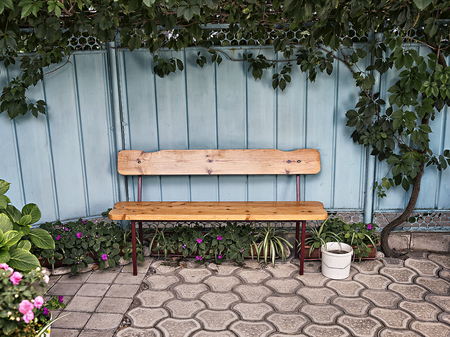 old furniture: wooden bench near the fence with ivy