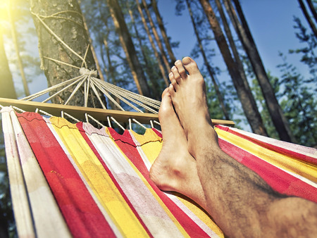 people relax: feet in the hammock on a background of pine forest