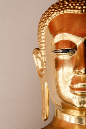 half Face Golden buddha Stock Photo - 12340430