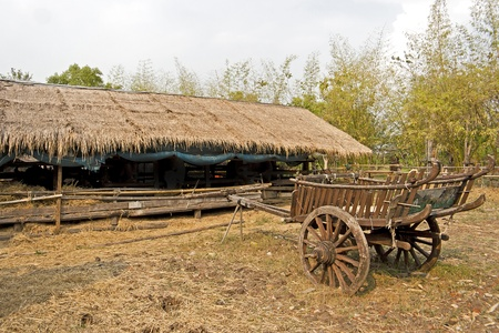 Cart of rice in farm a ground of Straw