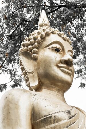 spirituell: Buddha Bronze Age sit background leaf tamarind Stock Photo