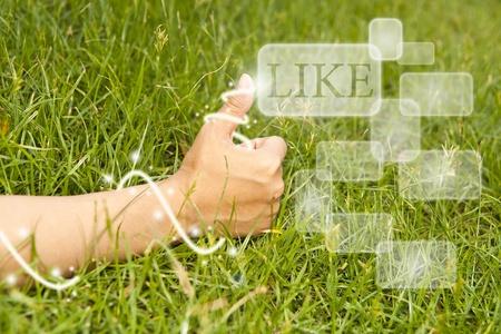 Hand finger Like on green grass . Stock Photo - 13127638