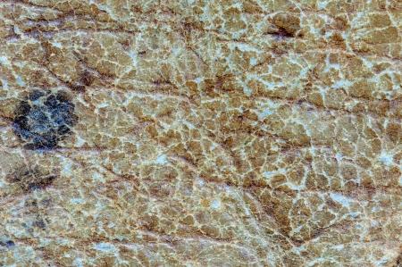 Alta resoluci�n viejo textura de cuero