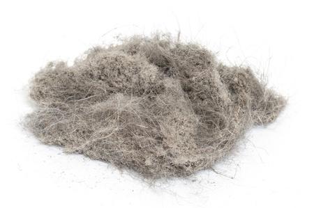 Mont�n de polvo con m�s lana Foto de archivo