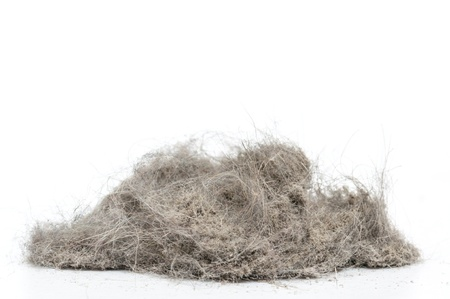 Dust heap with more wool
