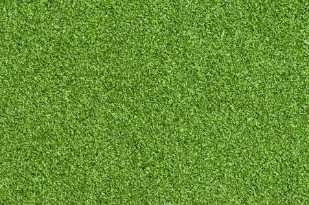 level playing field: Artificial grass green sunlight