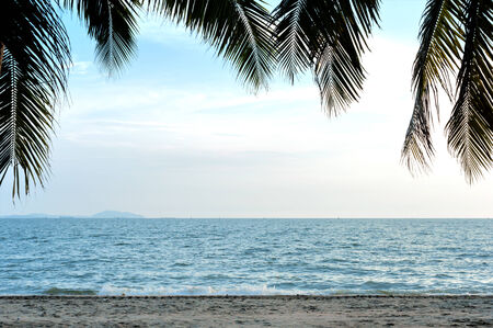 tropical view with coconut leaf . Stock Photo - 22741426