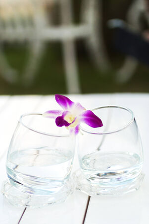 An Orchid on Glass water nature palce . Stock Photo