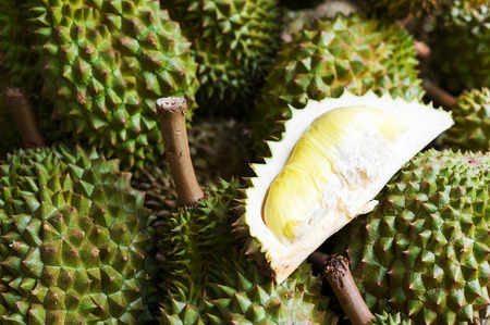 southeast: An Durian nature fruit in southeast asia .