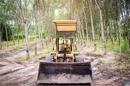 skid steer loader: An Skid truck in nature place . Stock Photo