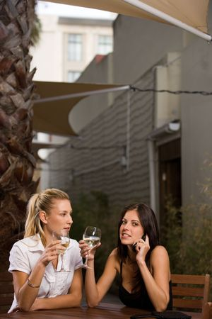 females drinking wine Stock Photo - 2469594