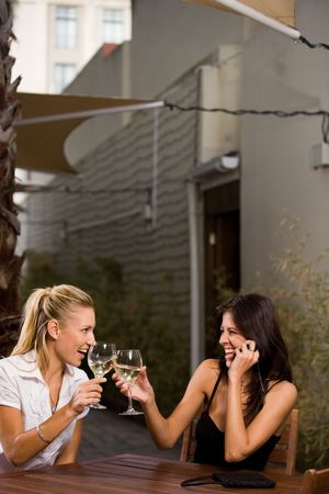 females drinking wine Stock Photo - 2469600