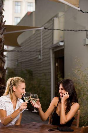 females drinking wine Stock Photo - 2469600