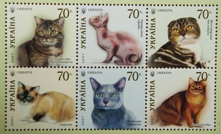 postage stamps: Cats postage stamps Editorial