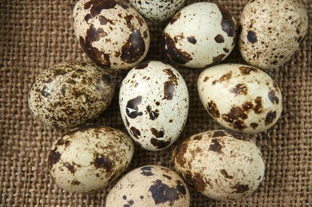 huevos de codorniz: huevos de codorniz deliciosa, la dieta y la salud alimentaria