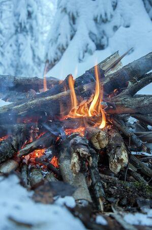 雪に覆われたもみの背景に、森の中で雪の中で火を燃やす 写真素材