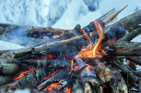 burns: Fire burns in the snow in the woods, on a background of snow-covered firs,