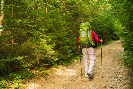 Attractive tourist with a big backpack travel regulates trekking pole on a mountain trail and , happy traveler overcome a long way , looking aside, adventure travel and discovery