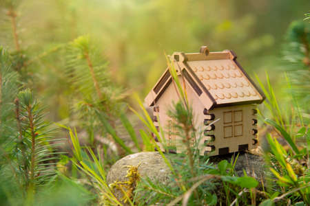 Wooden house model in a forest Eco house concept
