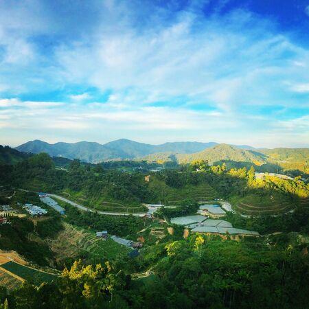 pahang: Cameron Highlands, Malaysia