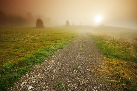 Road in the sunrise on a misty morning