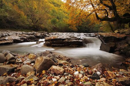 Autumn creek in Transilvania