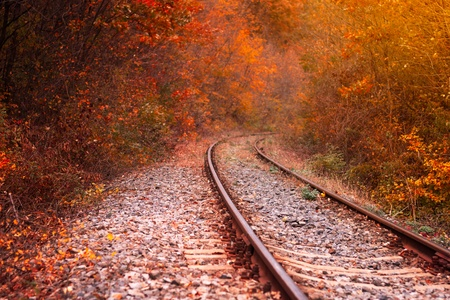 Railway in the autumn forest photo