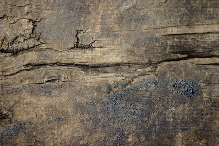 Oil stained old grunge wood texture