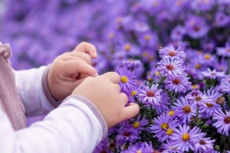 작은 아기는 꽃 따기 스톡 콘텐츠