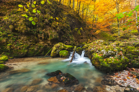 Amazing landscape photo in the autumn forest photo