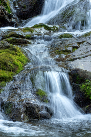 Small Waterfall closeup in deep forest
