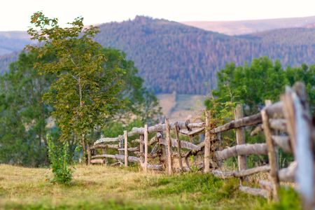 Rural scene with fence photo