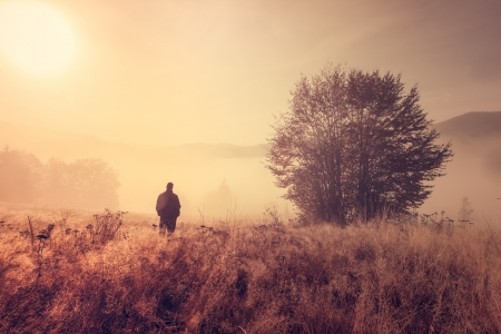 Lonely person in the morning mist  Landscape composition