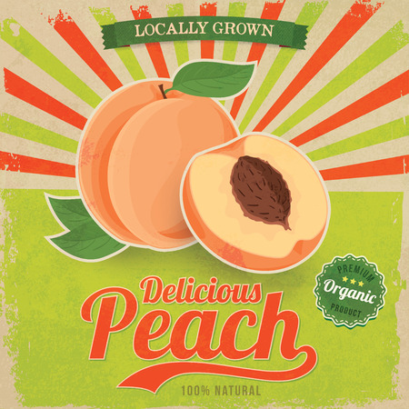 Colorful vintage Peach label poster vector illustration Çizim