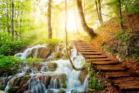햇빛 플리트 비체 호수, 크로아티아에서 맑은 물과 깊은 숲 스트림 스톡 콘텐츠