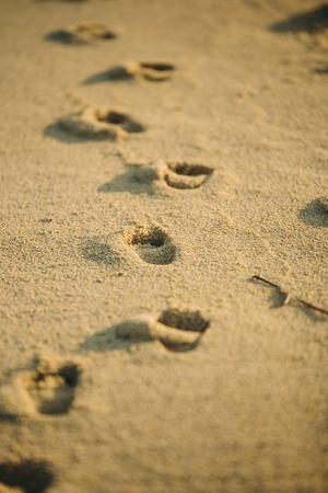 Footprints on the beach Lizenzfreie Bilder