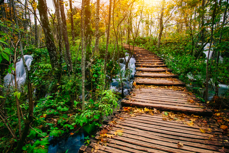 Beautiful wooden bridge pathway in the deep forest over a turquoise colored water creek in Plitvice, Croatia, UNESCO world heritage