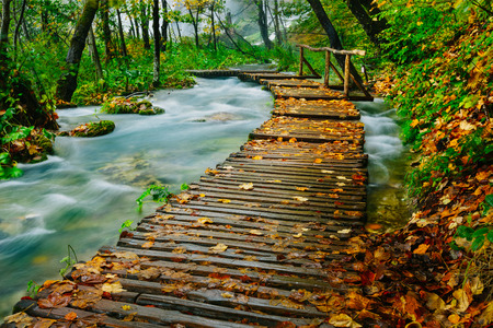 pond: Deep forest wooden pathway over the crystal water creek in Plitvice National Park Stock Photo