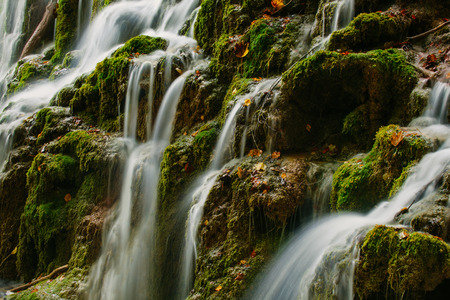 watered: Detailed view of a beautiful crystal watered waterfall in the forest