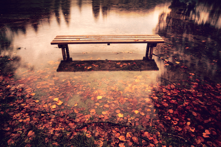 stone bridge: Bench on the bank of a lake in Autumn
