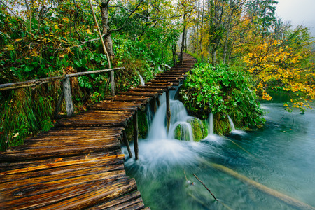 croatia: Deep forest stream with crystal clear water with pathway. Plitvice lakes, Croatia