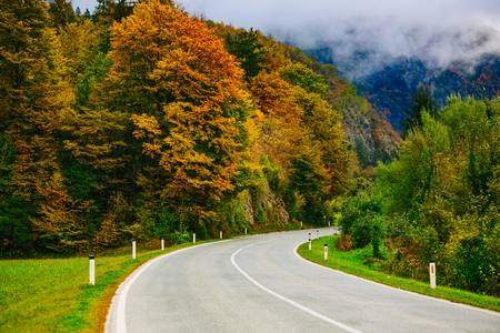 bohinj: Road in the mountains, Slovenia, Bled, Bohinj. Scenic view of the colorful autumnal forests and hills.