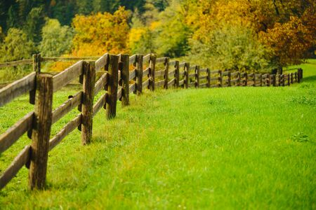 Beautiful green grass meadow with wooden fence in the Alps. Colorful scenic background.