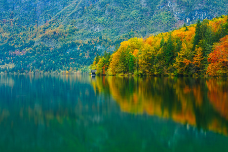 national forests: Breathtaking scenery of mountains, forests and lake with colorful reflections. Bohinj lake, Slovenia, Europe. Triglav national park.