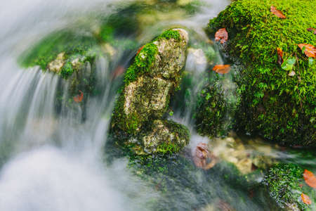 cascade: Mountain creek detail with mossy rocks and crystal clear water. Slovenia, Bohinj lake, Europe.