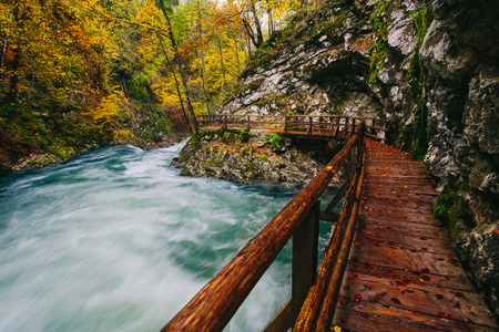 bridge in nature: The famous Vintgar gorge Canyon with wooden pats,Bled,Triglav,Slovenia,Europe