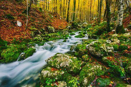 alpine,wilderness,zen