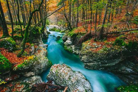 맑은 에메랄드 녹색 및 파랑 물 -Blled, 슬로베니아, 유럽 근처 Triglav 국립 공원, Mostnica Mostnice Korita 강 놀라운보기