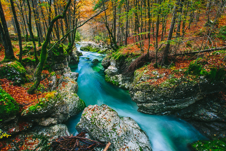 Amazing view of the river Mostnica Mostnice Korita with crystal clear emerald green and blue water - Triglav national park, near Bled, Slovenia, Europe